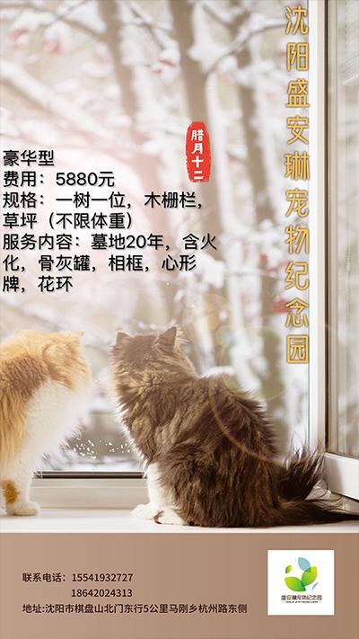 宠物安葬豪华型5800元