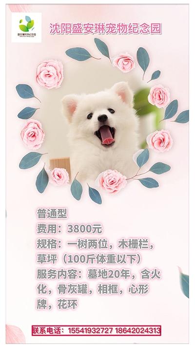 宠物安葬普通型3800元