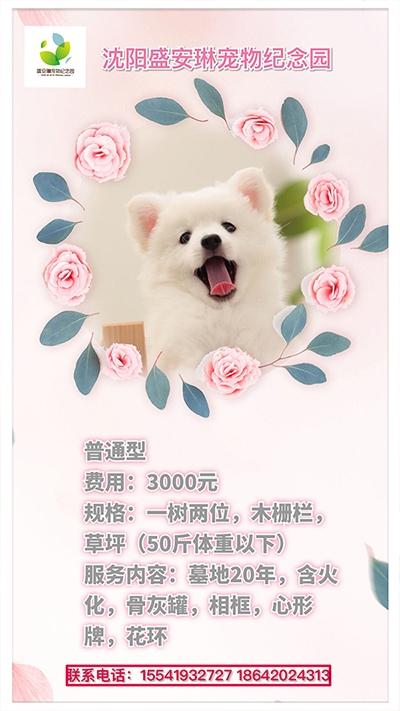 宠物安葬普通型3000元