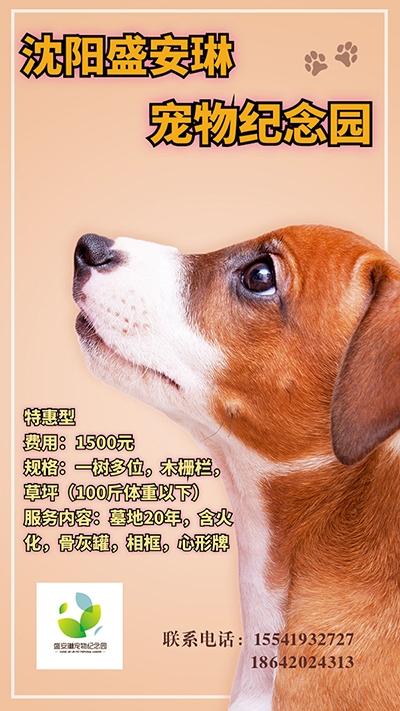 宠物安葬特惠型1500元